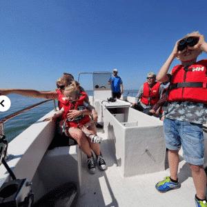 Sælsafari med Jyllandsakvariet - oplevelser i danmark